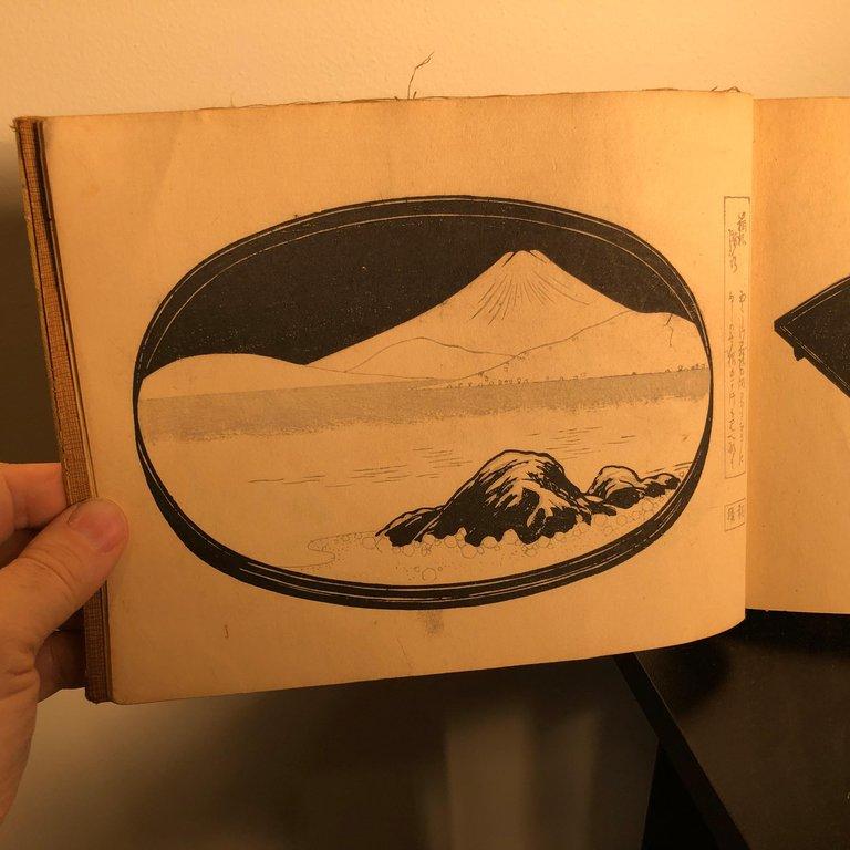 Fine Bonsai, Art and Nature