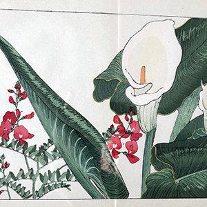 Japanese Books & Prints
