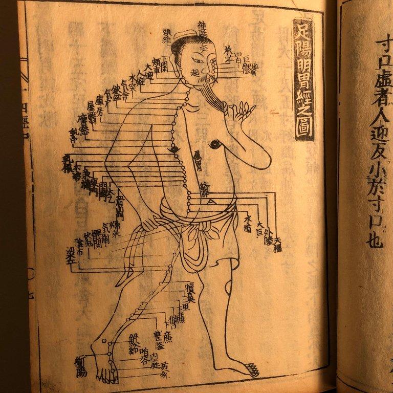 Important Acupuncture Japanese Antique Woodblock Guide Book 1762 Superb Prints Schneible Fine Arts Llc