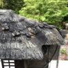 Bronze Minka Farm House Lantern