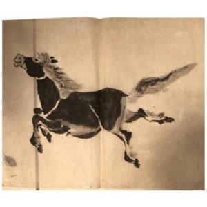 Horse Manuscript Album