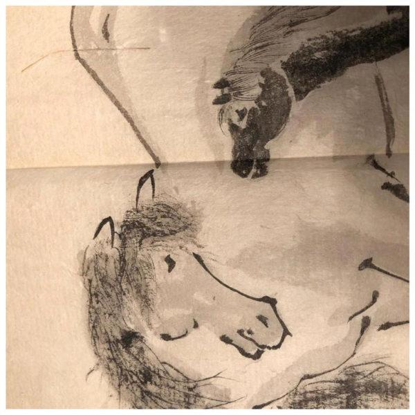 Hand painted horses album