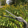 Huge Bronze Cranes Pair - Beautiful Details