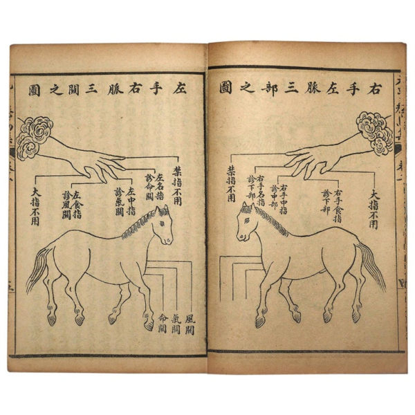 "Antique ""Horse Veterinary"" Complete Woodblock 5 Book Set"