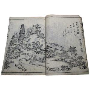 Antique Garden Designs & Landscaping Woodblock Books