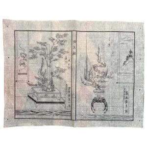 Japanese Antique Flower Ikebana Wood Block Prints